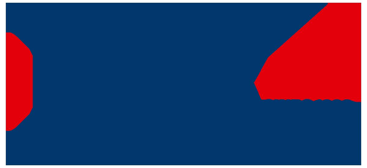 Logo-ESV-Sinds1993